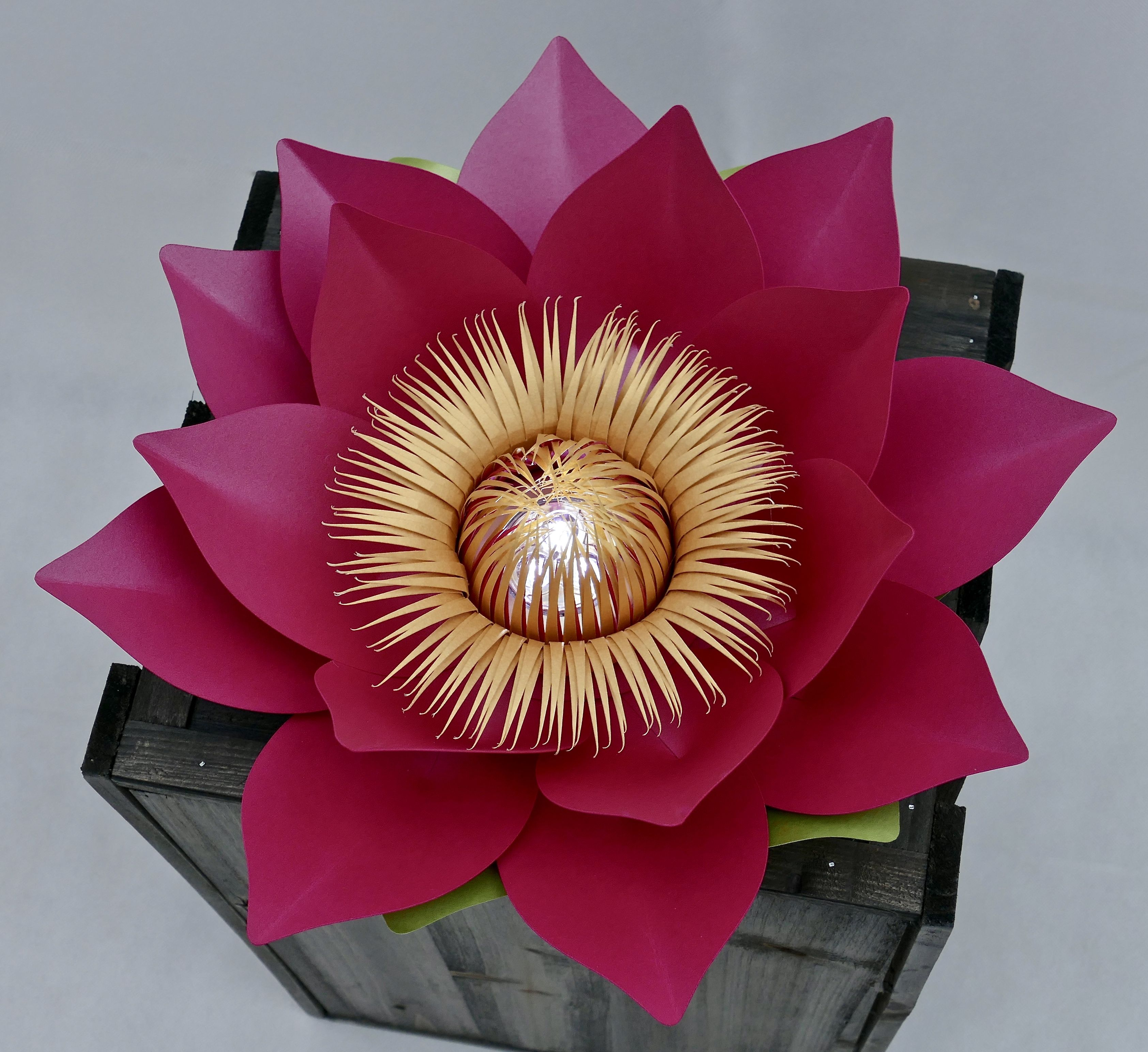 A Lotus Flower Light Created By Paper Flower Company Made With