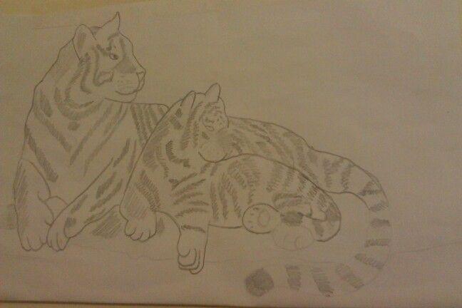 My tiger drawing