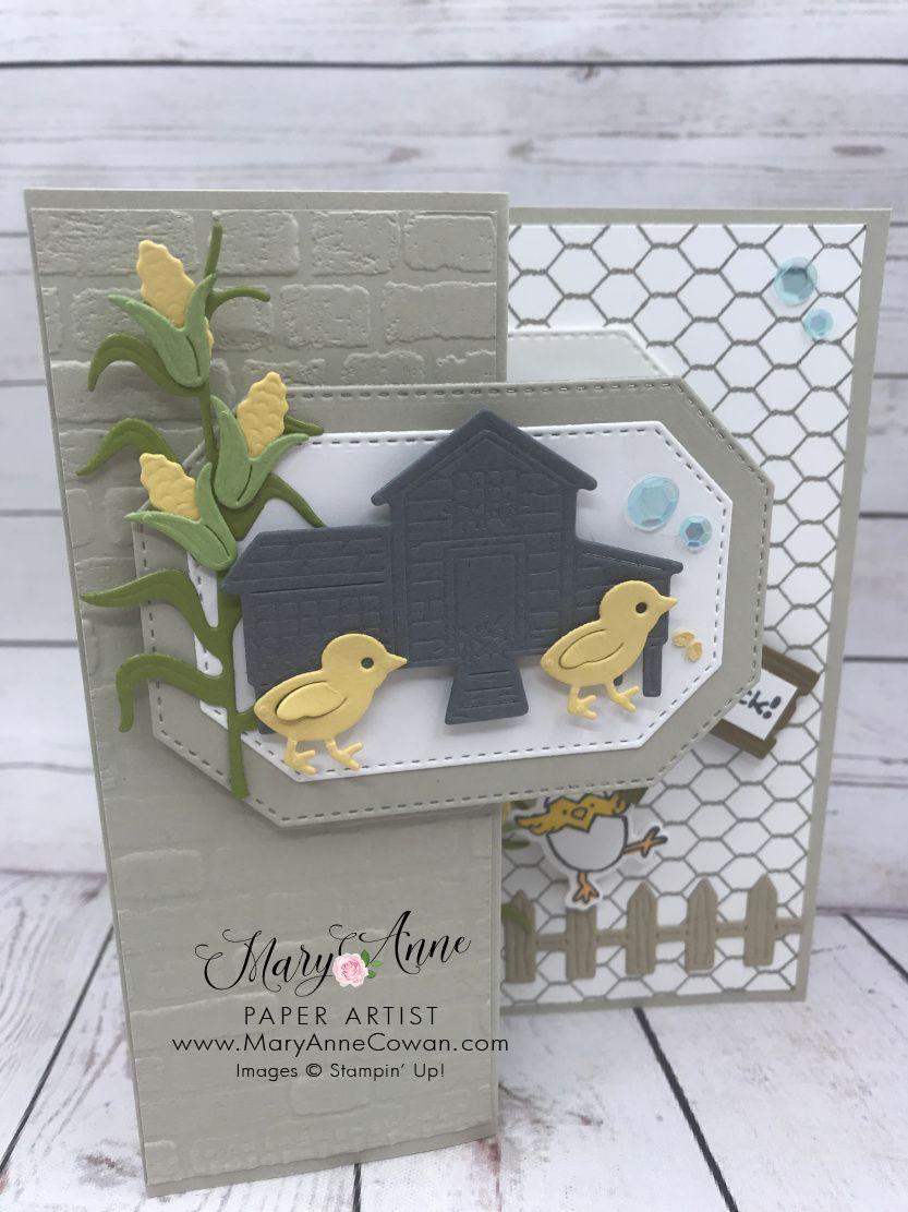 Farmyard Chick