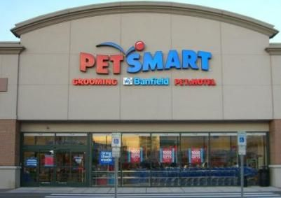 My Favorite Reason To Go To Petsmart Is To See All The Cats And
