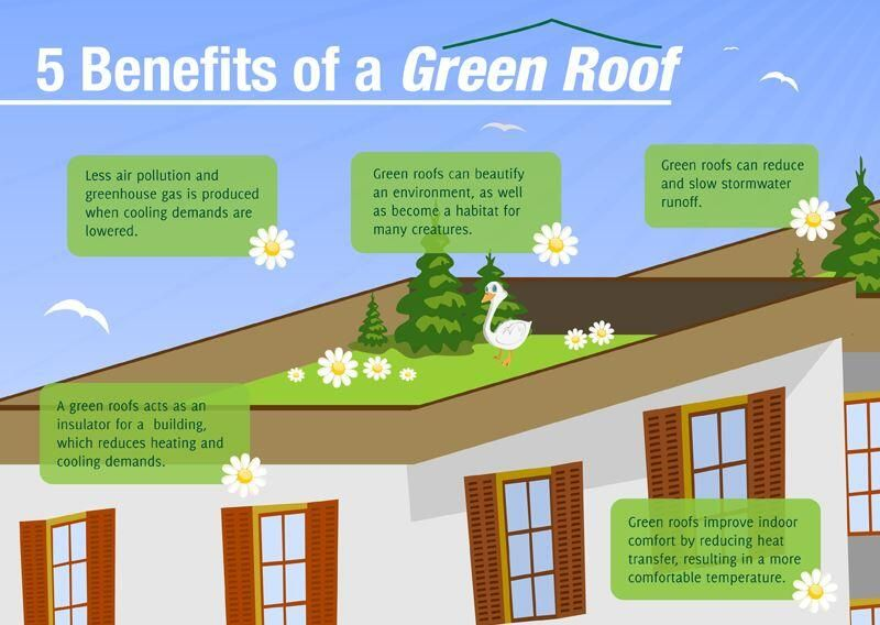 Embedded Image Permalink Green Roof Roof Restoration Green Building