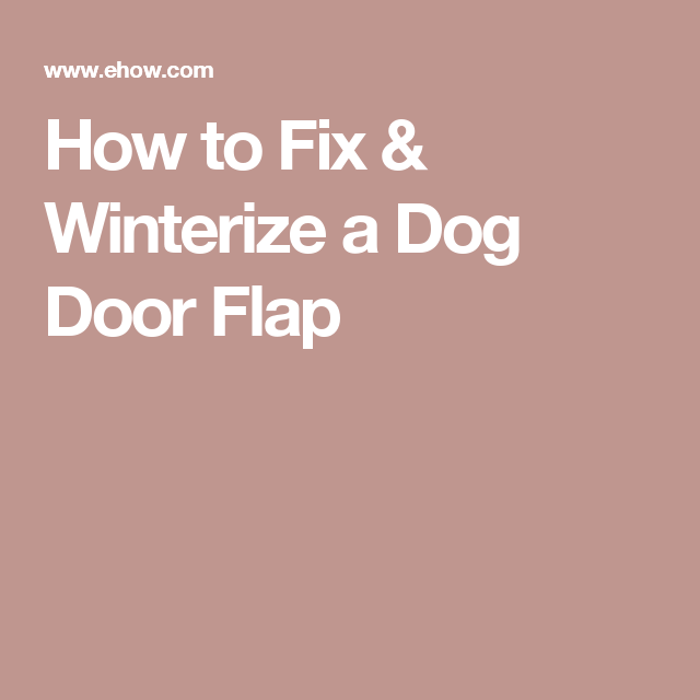 How To Fix Winterize A Dog Door Flap Diy And Hacks Great Ideas