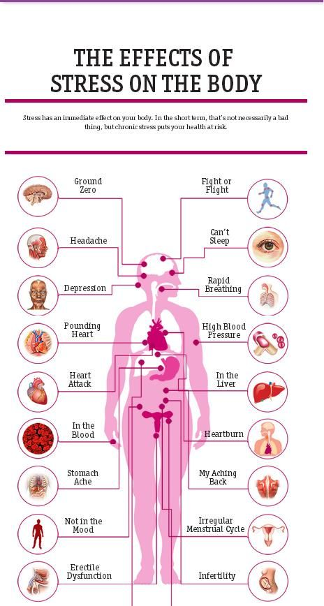 Healthline Outlines The 20 Effects Of Stress On The Body