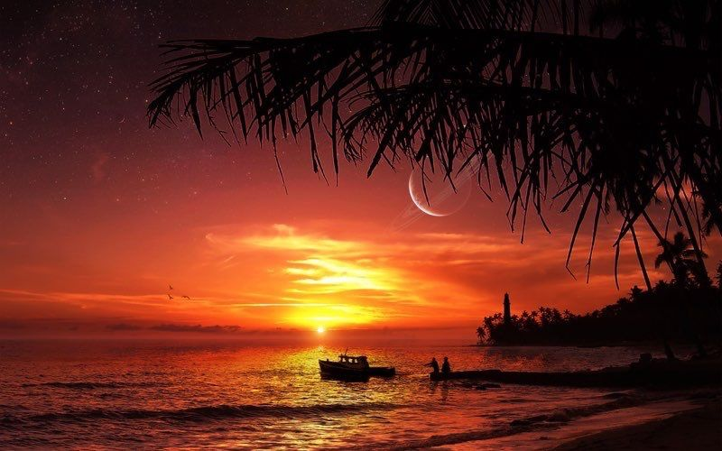 Tropical Beach 27