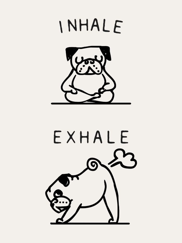 Inhale Exhale Pug Art Print Inhale Exhale Pugs