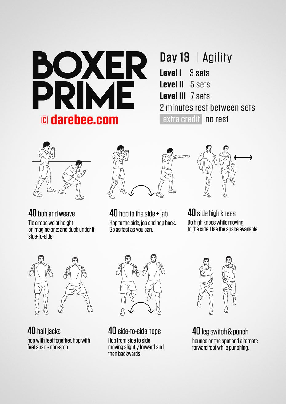 Boxer Prime 30 Day Fitness Program Boxing Training Workout Boxer Workout Boxing Techniques