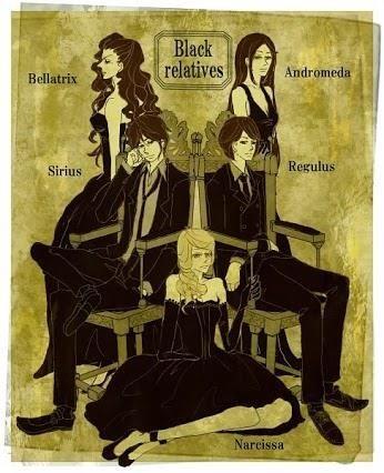 The Black Family Fan Art Fan Art Harry Potter Universal Harry Potter Anime Harry Potter Obsession
