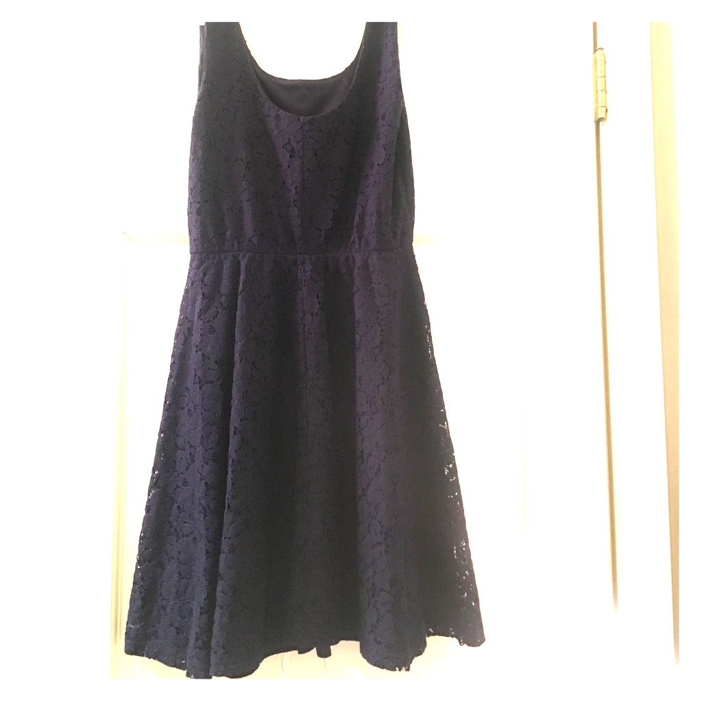 Lace dress navy blue  Navy Blue Lace Dress  Products