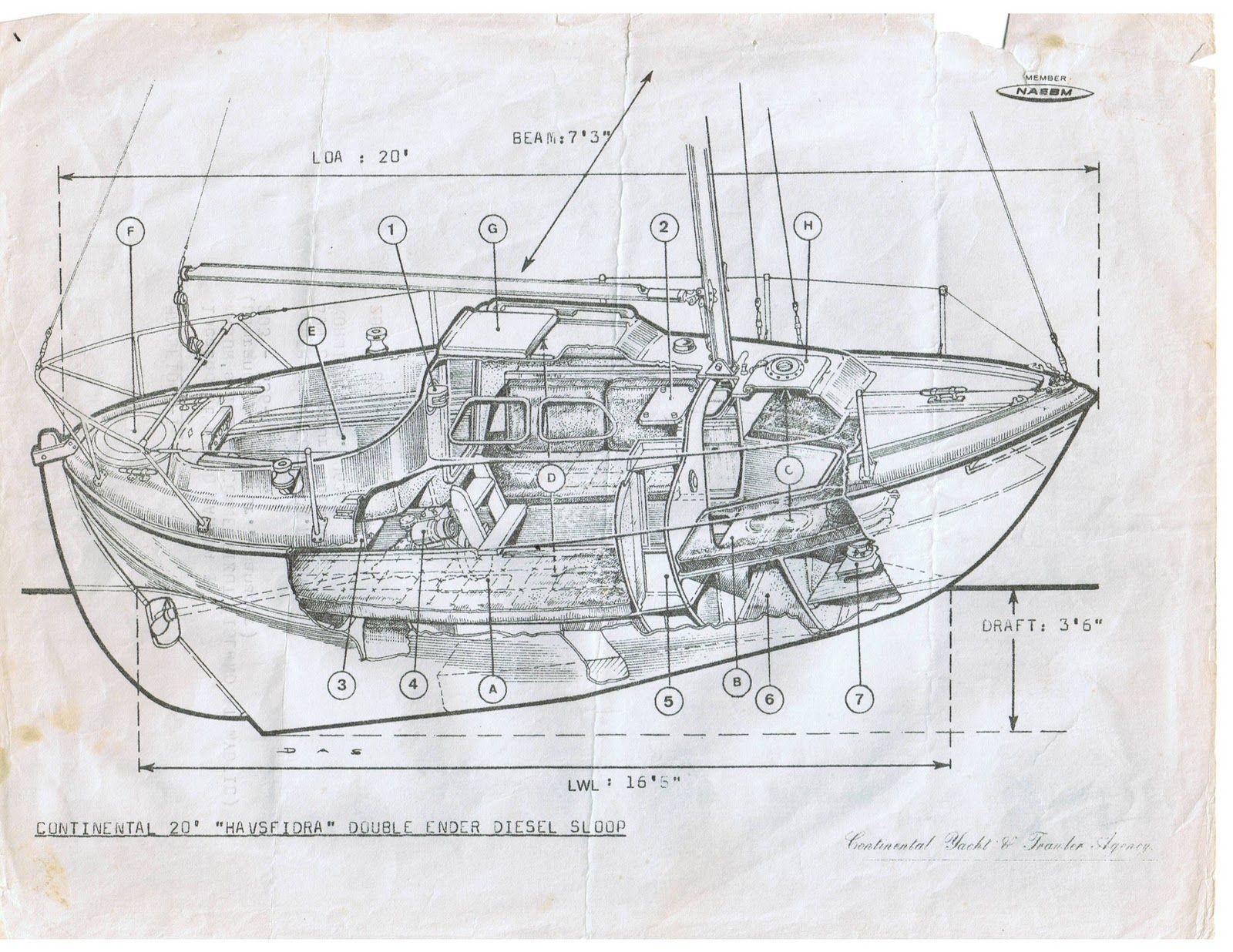Havsfidra 20