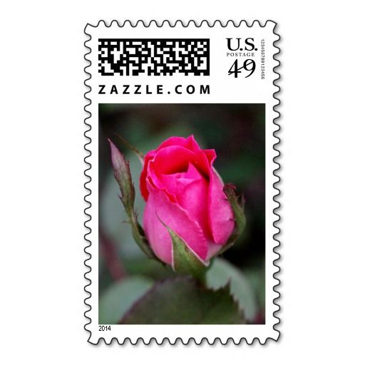 Blooming Red Rose Bud, floral postage