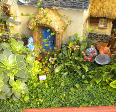 Gardens in Minature: Fairy Gardens, Secret Gardens, What a Delight in winter and all year long!