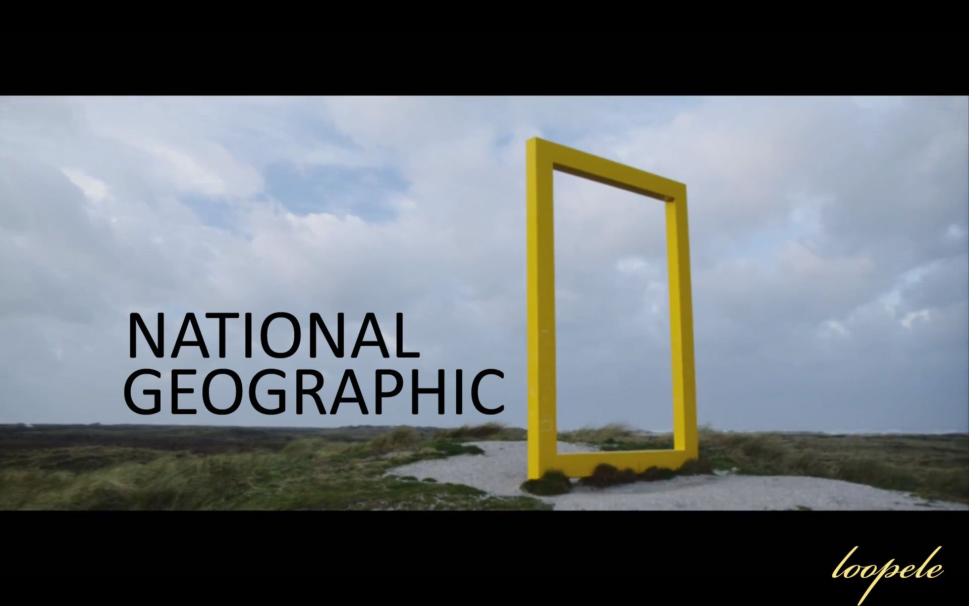 national geographic logo Google Search National