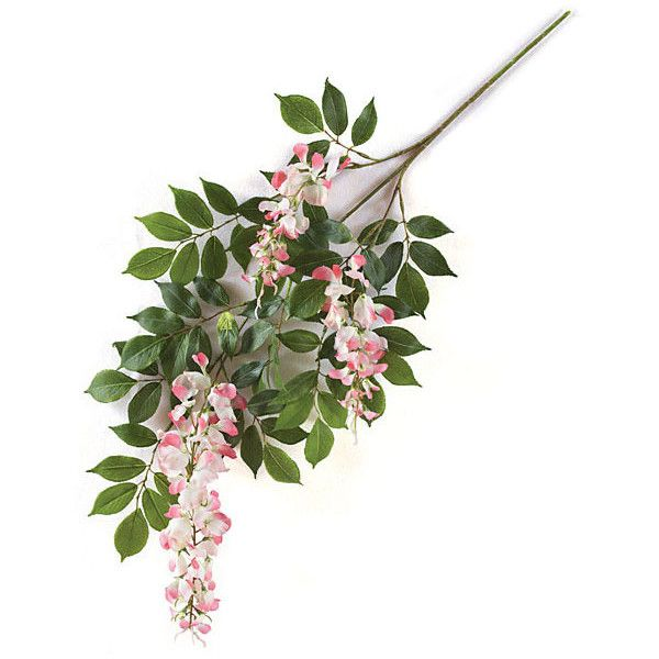 27 inch Artificial Pink Wisteria Branch (Set of 12) (274.610 COP) ❤ liked on Polyvore featuring home, home decor, floral decor, plants, filler, pink home decor and branches home decor