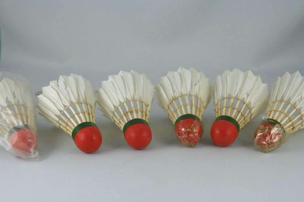 12pcs Set Training Goose Feather Shuttlecocks Birdies Badminton Ball Games Ebay Shuttlecocks Vintage Badminton
