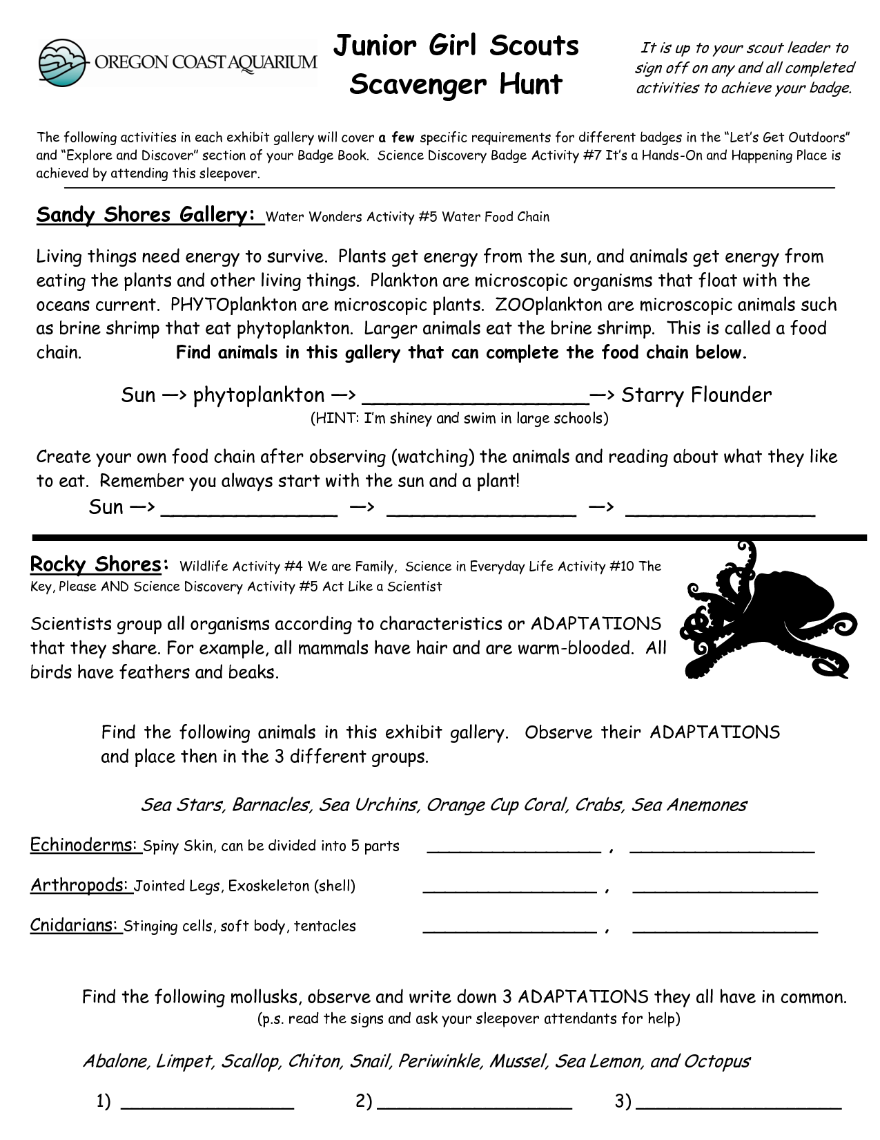 Junior Girl Scout Badge Worksheets