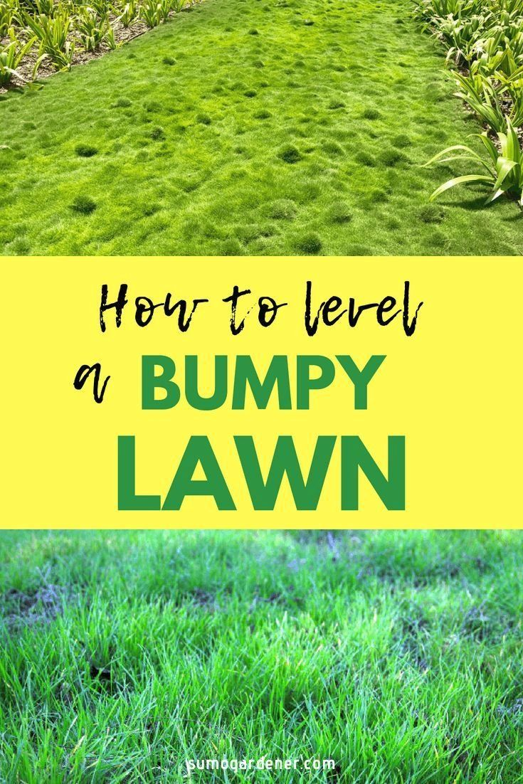 How To Level a Bumpy Lawn Causes and Fixes Sumo