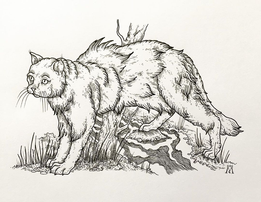 C is for Commonpiece Cat, a large breed of cat as big as a pig, used to be regularly seen in the early 1900s near the River Trent. A4 original for sale. #folklore #pagan #occult #medieval #witch #witchcraft #macabre #art #arte #artofinstagram #artistsoninstagram #instaart #instaartwork #instalike #instafollow #instatattoo #darkart #darkartists #blackwork #blackworkers #blackworktattoo #blacktattoo #blacktattooart #btattooing #theartoftattoos #onlyblacktattoos #artesobscurae #blackworkerssubmissi