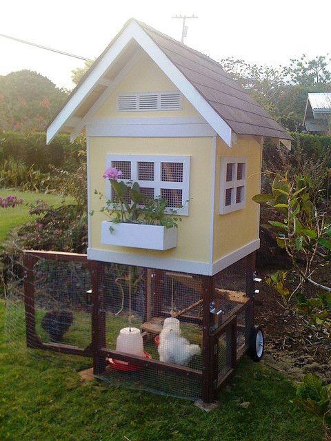 Kippenhok Met Plantenbakje Met Afbeeldingen Kippenhok Kippen
