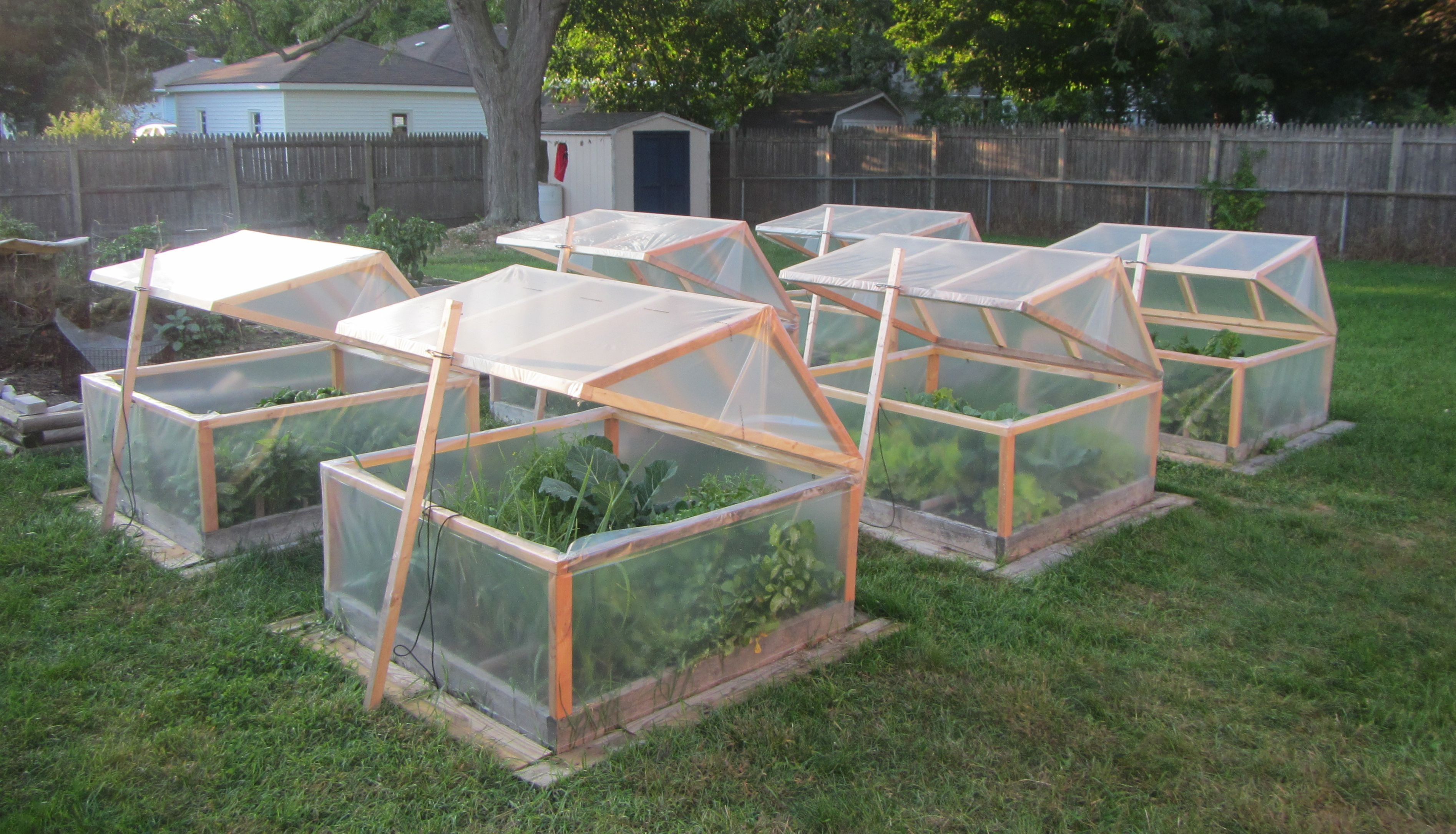 These are my mini greenhouses for winter gardening. They open for venting; they close for protection. They open all the way for easy harvest. High walls allow plenty of room for taller plants. Pitched roofs will shed snow in the Michigan winter. I built six of them. The garden is ready for winter!! I love fall gardening. It's the best time of year. All harvest, no work and no weeds! :) #gardendesign #wintergardening