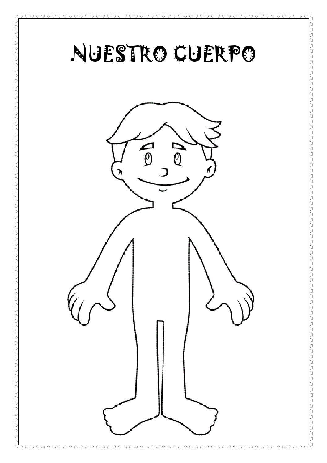 Fichas el cuerpo humano   Homeschool