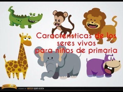 El Reino Animal Para Ninos Videos Educativos Para Ninos Youtube Animales Salvajes Animados Animales Dibujos Animados Animales Salvajes