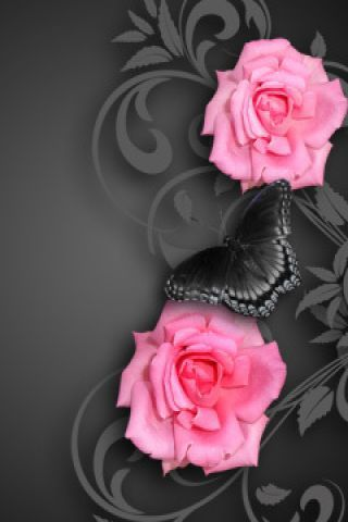 My Mother Loved Pink And Black Together Pink Flowers Wallpaper