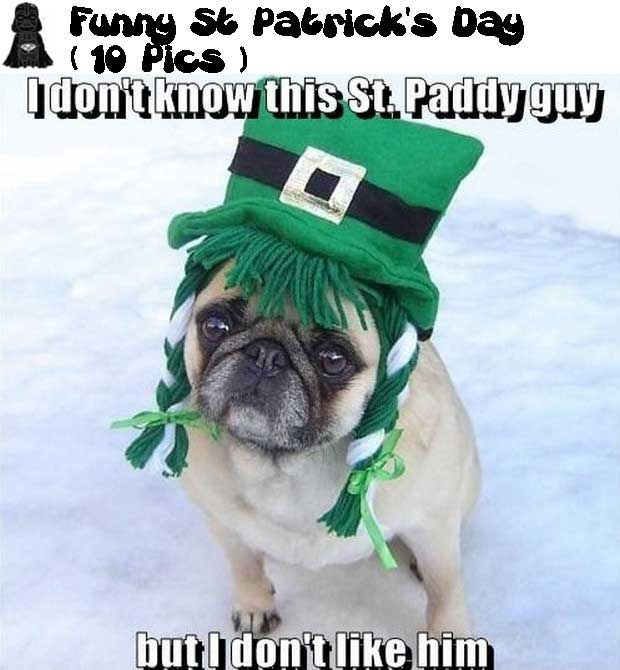 Funny St Patrick's Day Pictures ( 10 Pics )