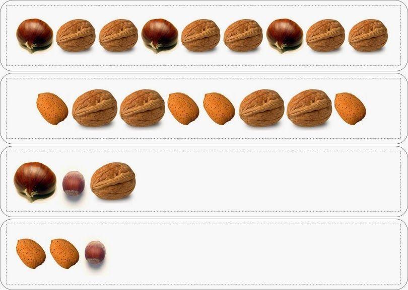 Fruits secs s ries sz pinterest automne automne - Fruits automne maternelle ...