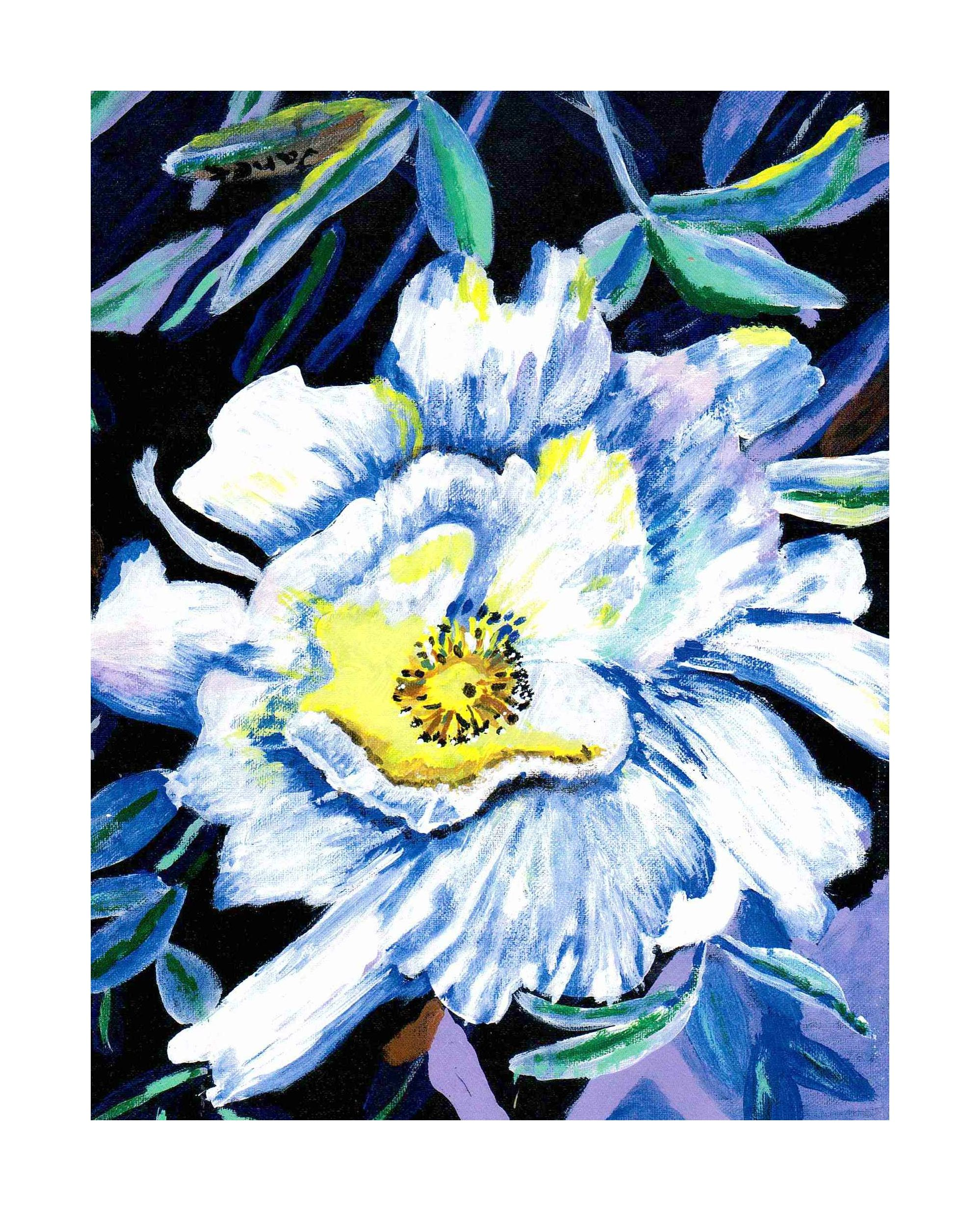 White Flower Artwork, Up Close Art, Flower Artwork, Original