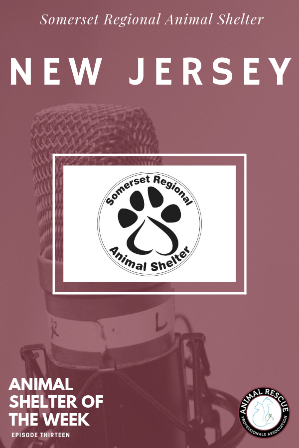 Pin By Animal Rescue Professionals As On Arpa Podcast Shows Professionals Rescues Shelters Animal Shelter Service Animal Shelter