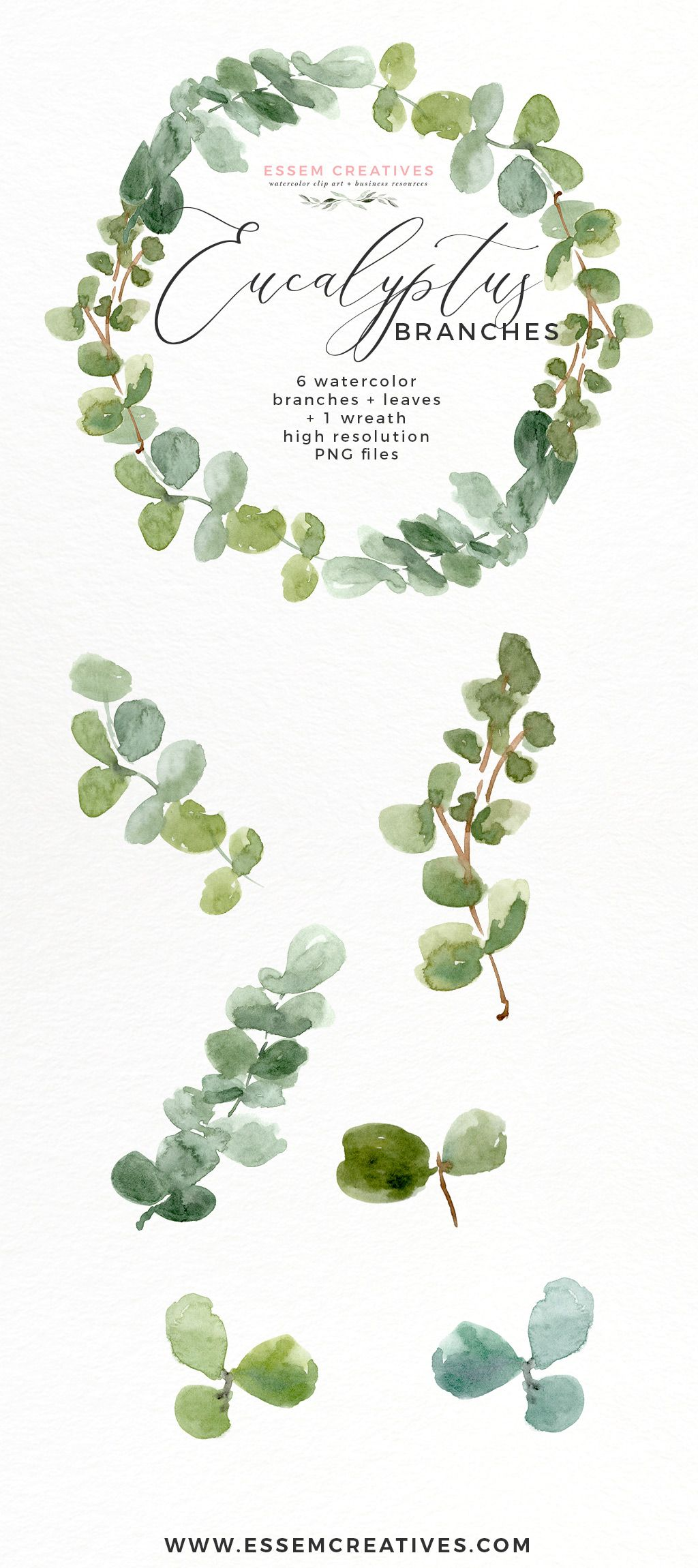 Watercolor Eucalyptus Wreath Branches Clipart Png Essem