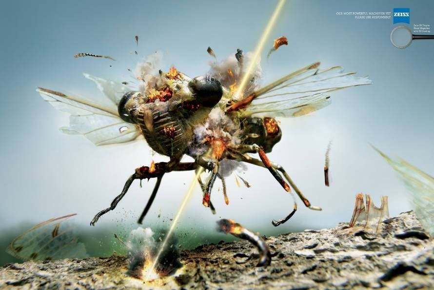 Zeiss: Fly