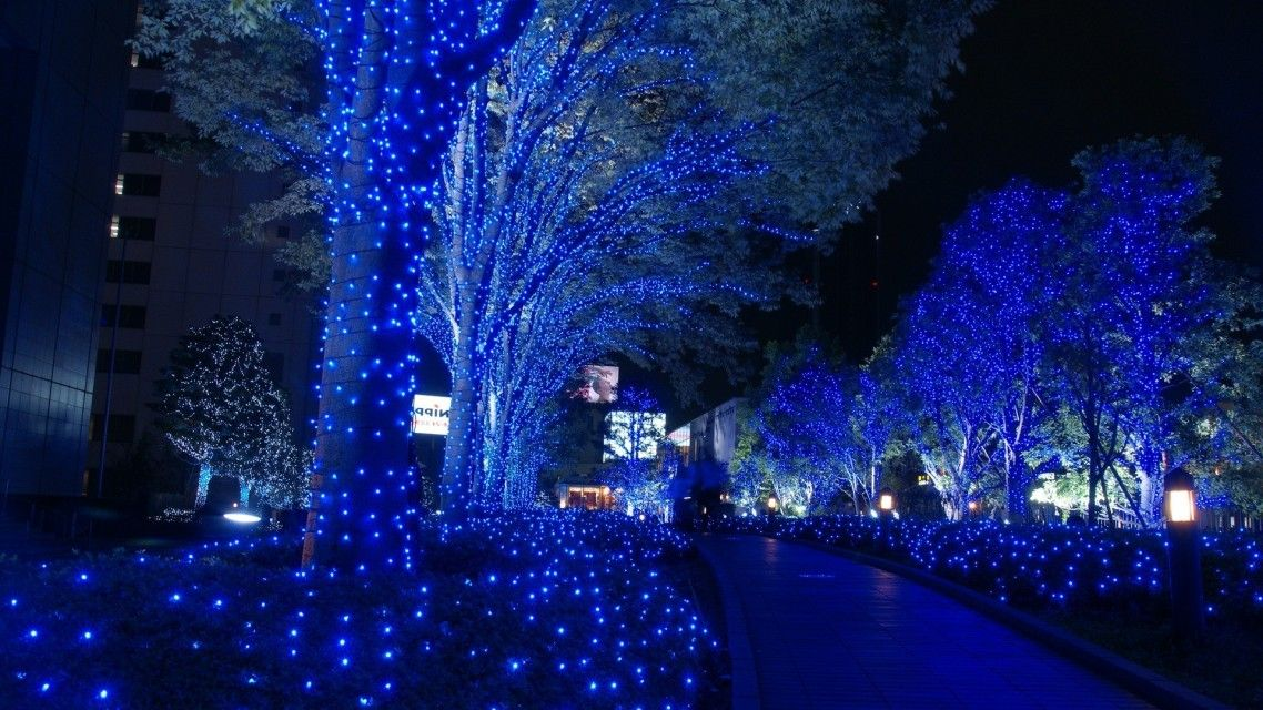 Christmas Lights Outdoor.Modern Christmas Lights Outdoor Zef Jam