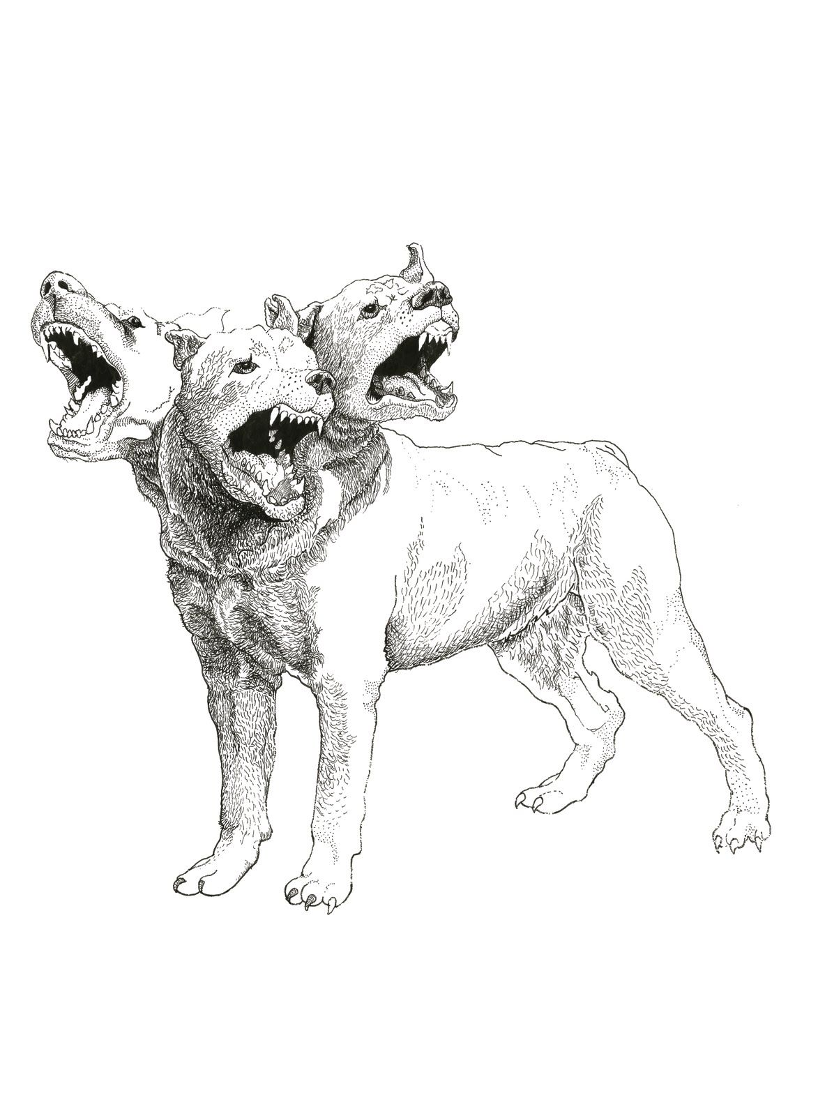 Cerberus , In Greek And Roman Mythology, Is A Multi-headed