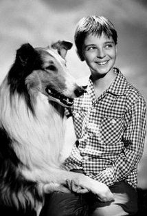"Sept. 12, 1954, ""Lassie"" makes its television debut on CBS, with Tommy Rettig as Jeff Miller."