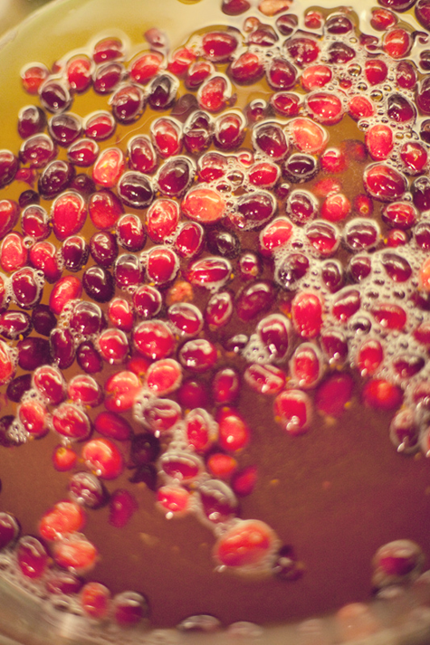 cranberry ring for punch via design sponge
