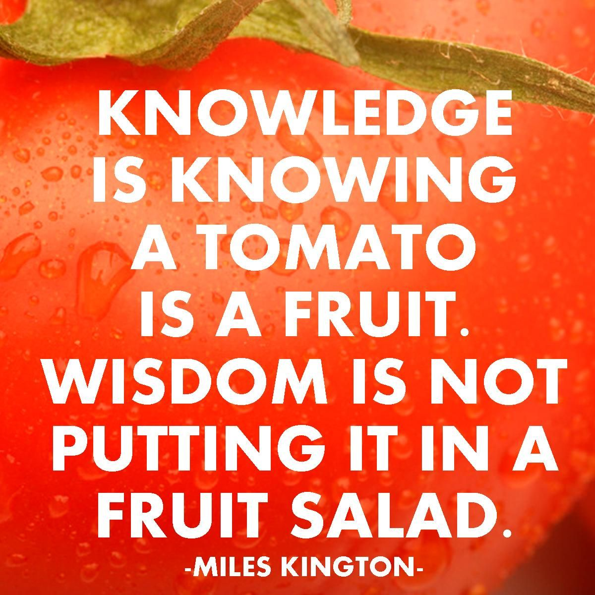 Image result for what is the difference between wisdom and knowledge