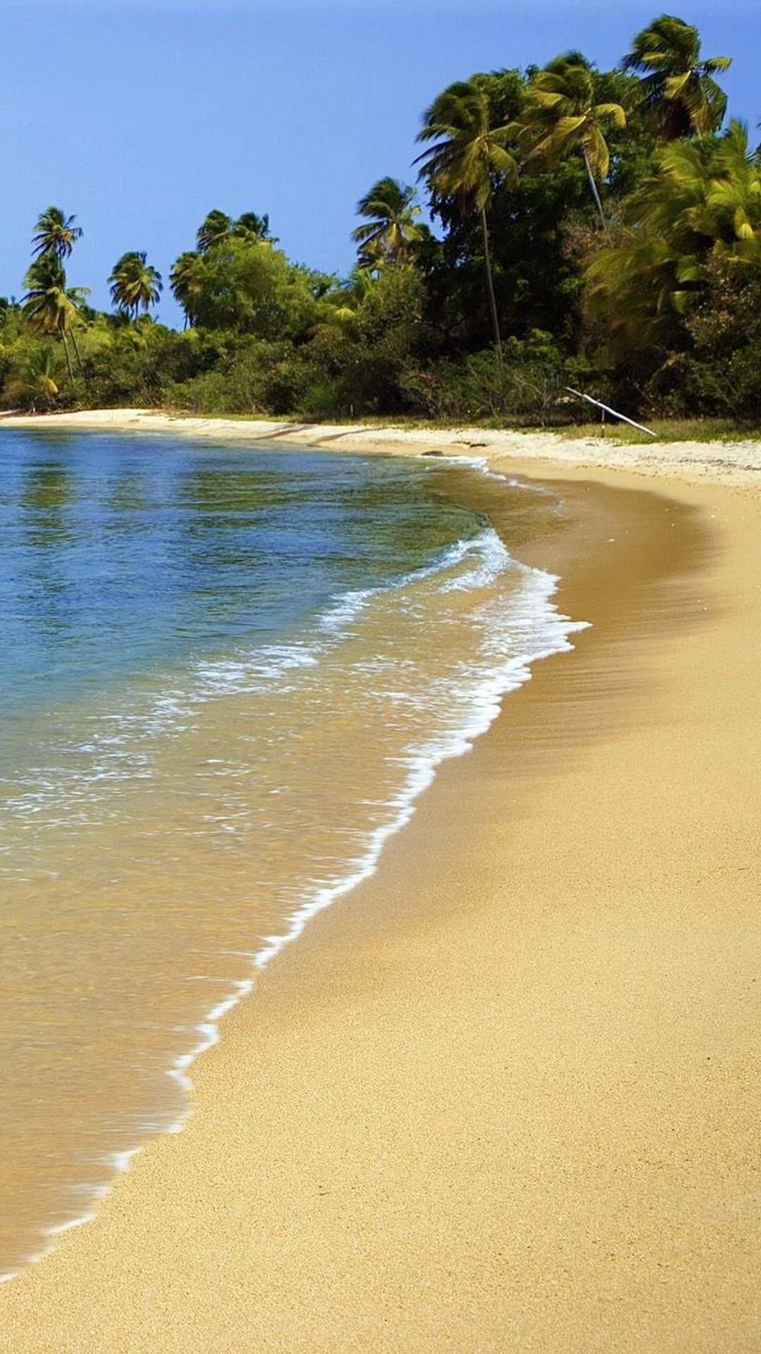 Puerto rico beach sand palm trees iphone 6 wallpaper - Puerto rico beach background ...