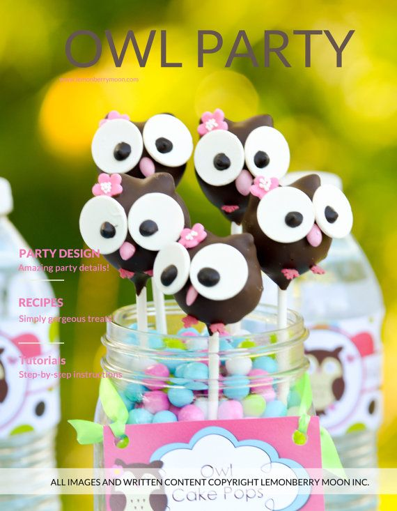 PARTY PLAN Kids Birthday Party Plan Owl Theme For A Girl of Any