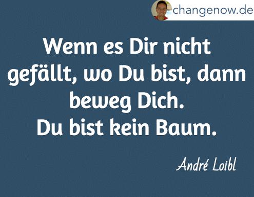 Wenn es Dir nicht gefällt, wo Du bist, dann beweg Dich. Du bist kein Baum. / André Loibl