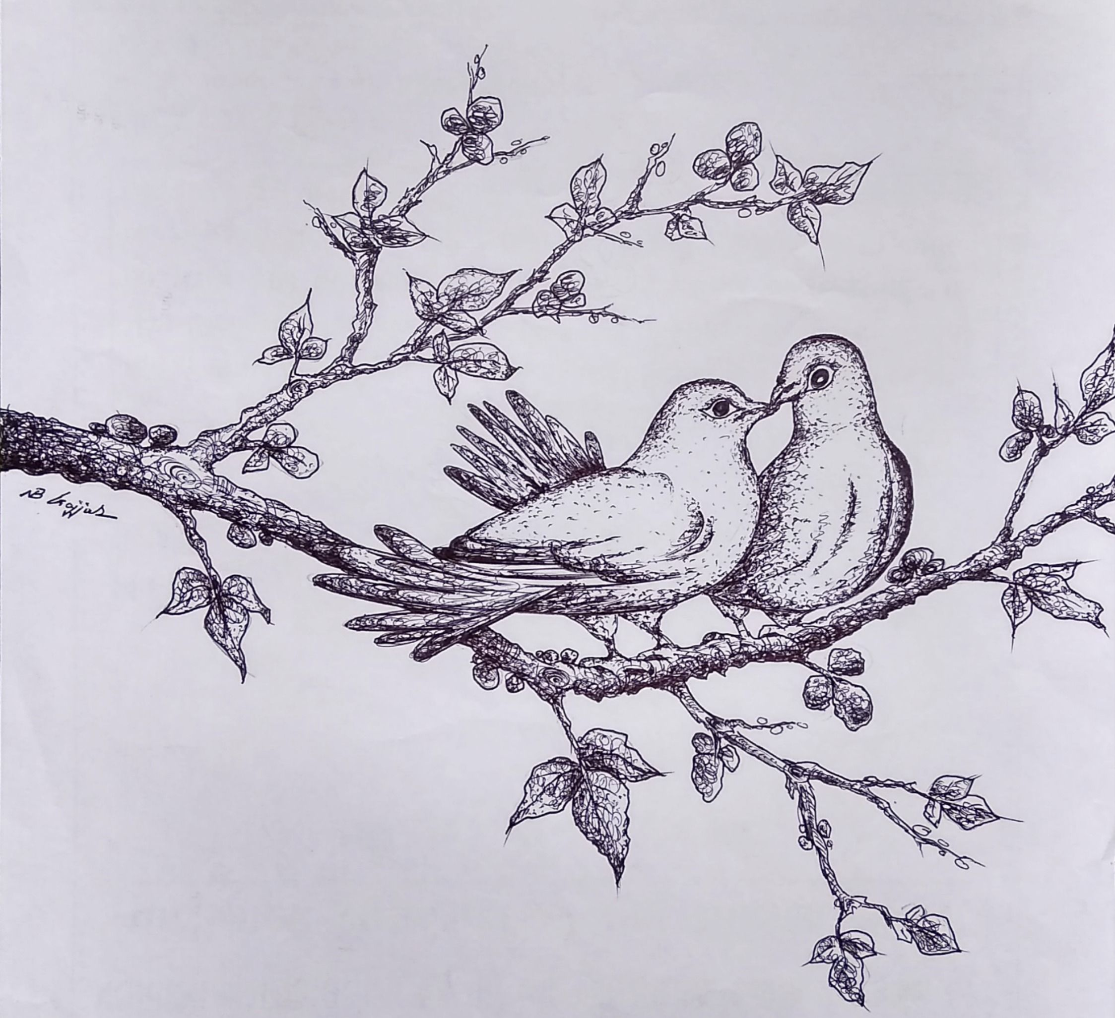 Love Birds Pencil Sketch Love Birds Drawing Abstract Sketches Bird Drawings