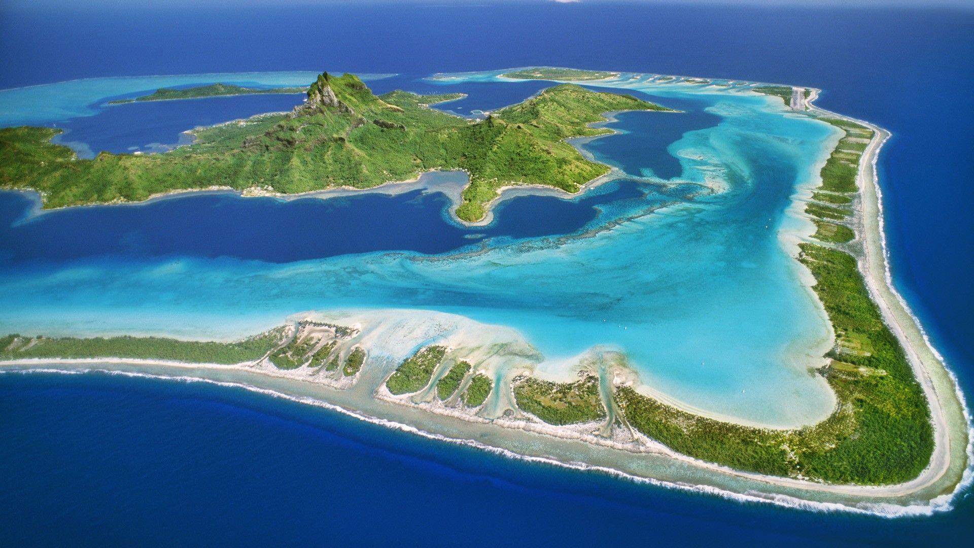 Bora Bora Island >> Bora Bora Island Portuguese Man O War Bora Bora Island
