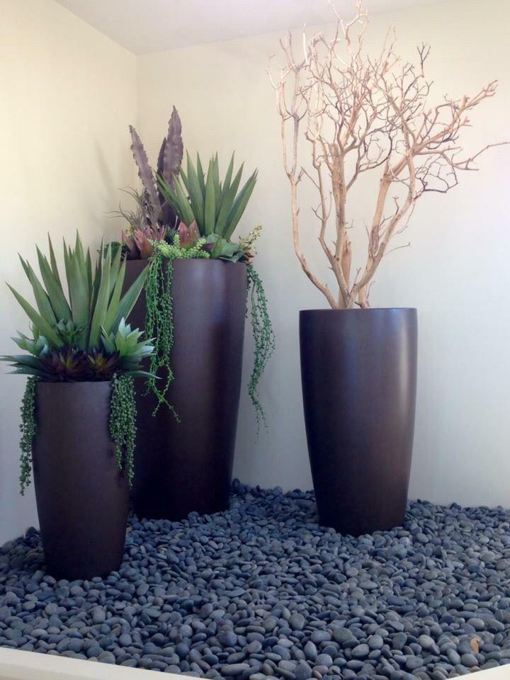 Agave Tall Con Tempo Arrangement Designed By Interior Plant Service, Inc.