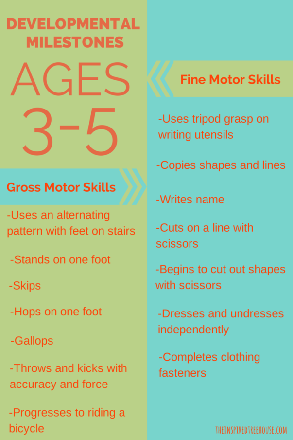 Preschool Milestones Ages 3 To 5 The Inspired Treehouse