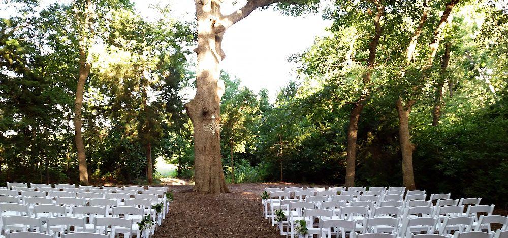 Chandler S Gardens Mckinney Tx Wedding Venue Flowers And Lace
