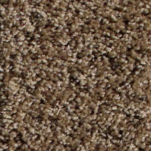 Clydesdale Spicey Ginger Carpet Flooring Okc Firststepflooring Pet Friendly Carpets Carpet Cheap Carpet Runners