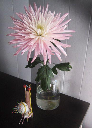 Article:  Long-Lasting Cut Flowers