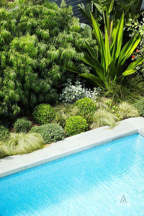 © Adam Robinson Design Sydney Outdoor Design and Styling ...