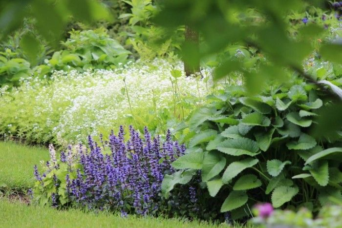 Avoimet puutarhat - Puutarhat > Arboretum Magnolia