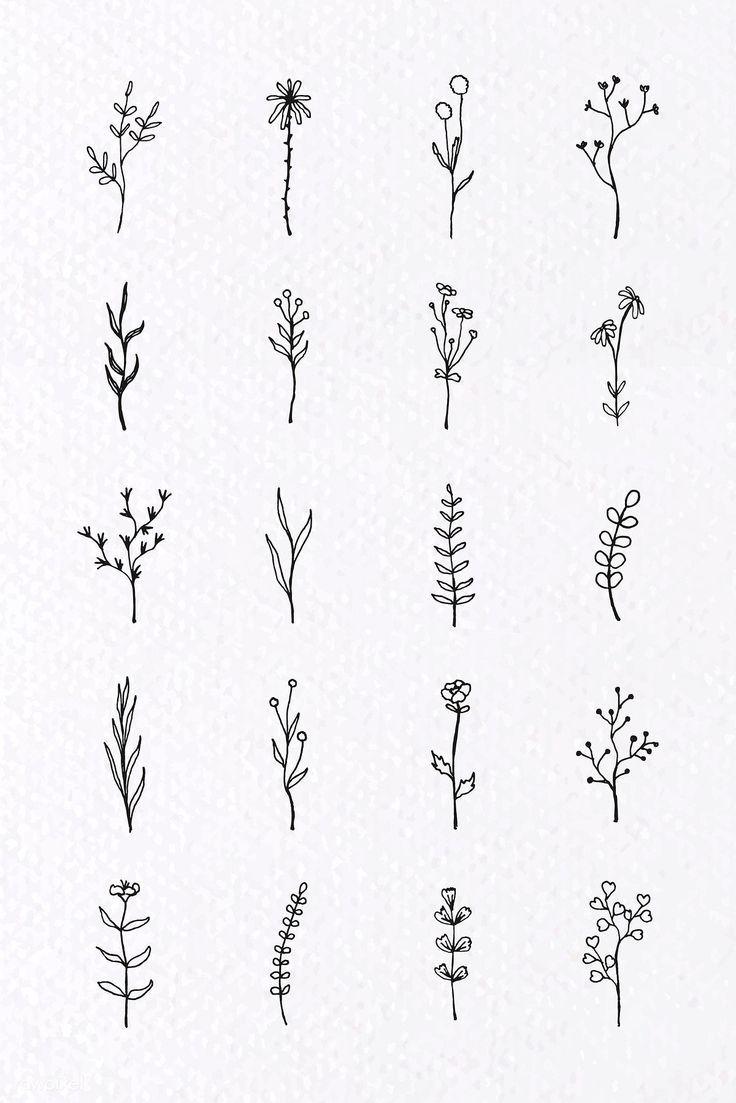Tropical plant element vector set | premium image by rawpixel.com / sasi #vector #vectoart #digitalpainting #digitalartist #garphicdesign #sketch #digitaldrawing #doodle #illustrator #digitalillustration #modernart #leaves